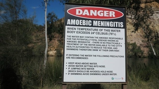 australia-meningitis-amebiana