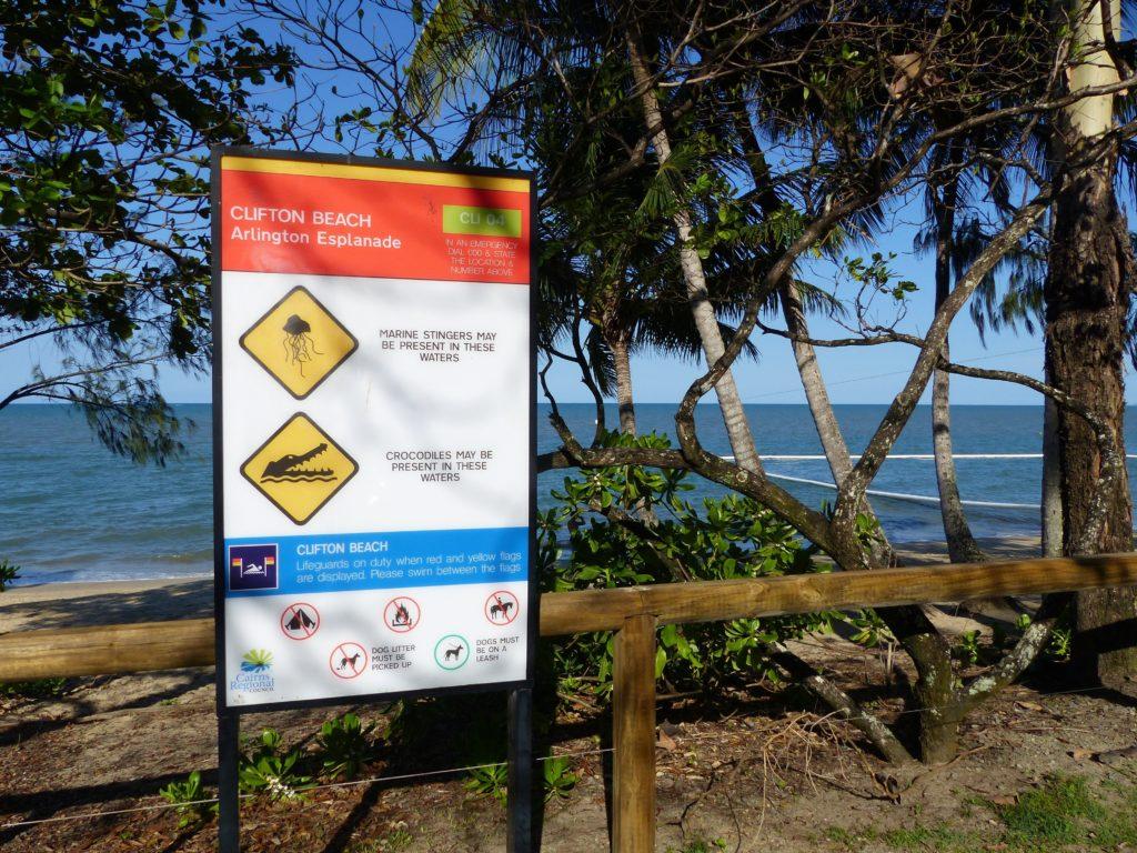 australia-playa-peligro-cocodrilos-medusas